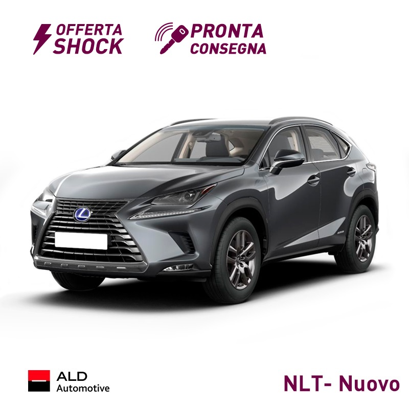 noleggio a lungo termine lexus nx hybrid business a 349 al mese hurry. Black Bedroom Furniture Sets. Home Design Ideas