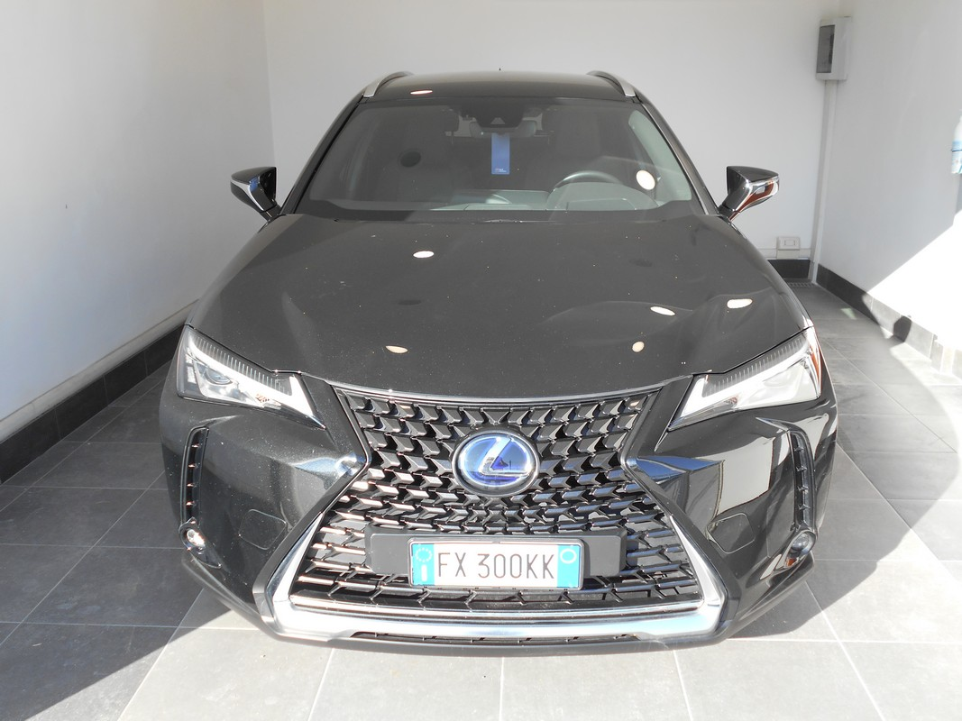Lexus UX Hybrid 2
