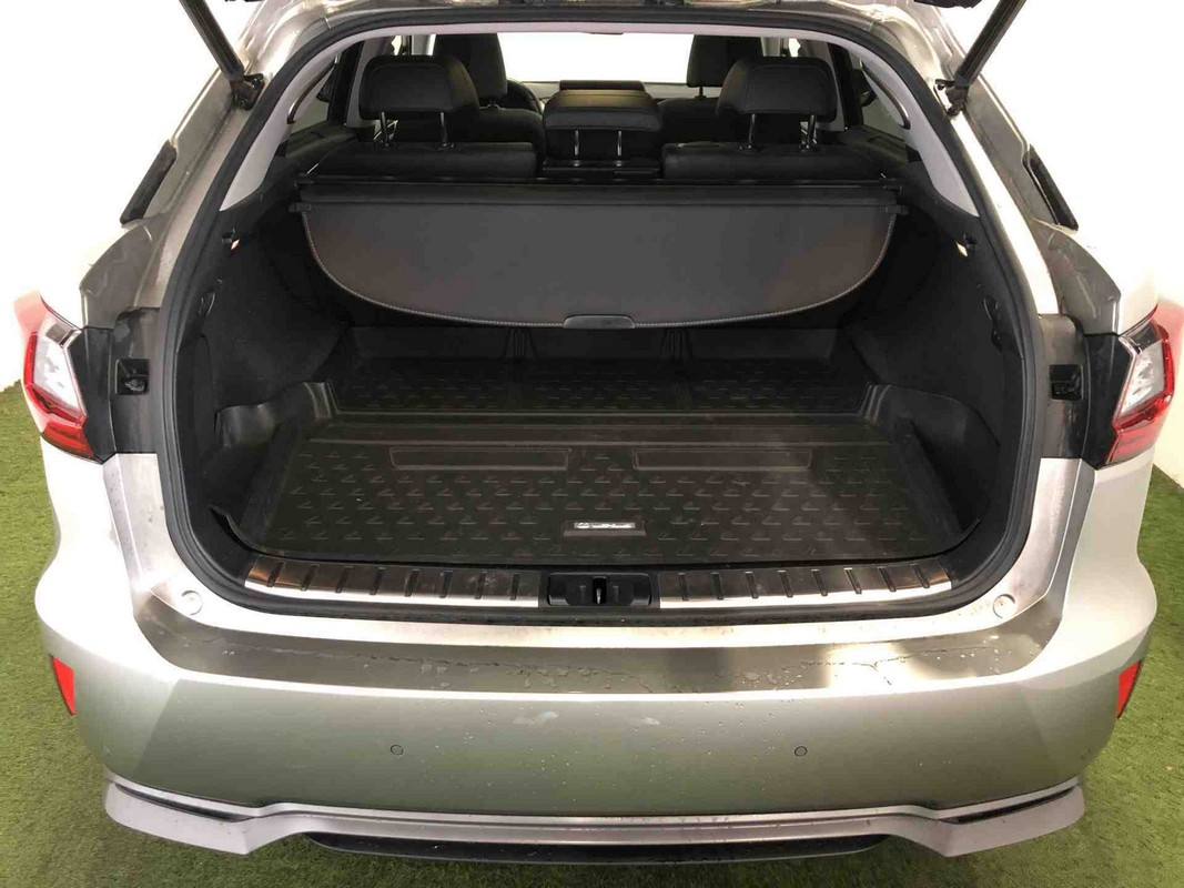 Lexus RX Hybrid 8
