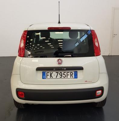 Fiat Panda 7