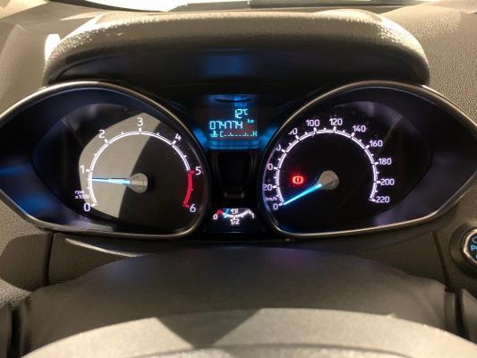 Ford EcoSport 14