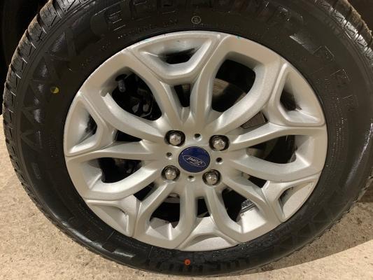 Ford EcoSport 18