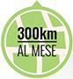 300 km